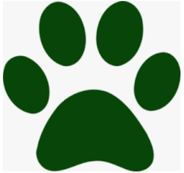 Dark green paw
